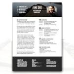 Consultant Creative Resume Template
