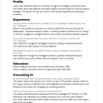 Consultant Resume PDF Sample
