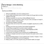 Digital Marketing Expert Resume PDF