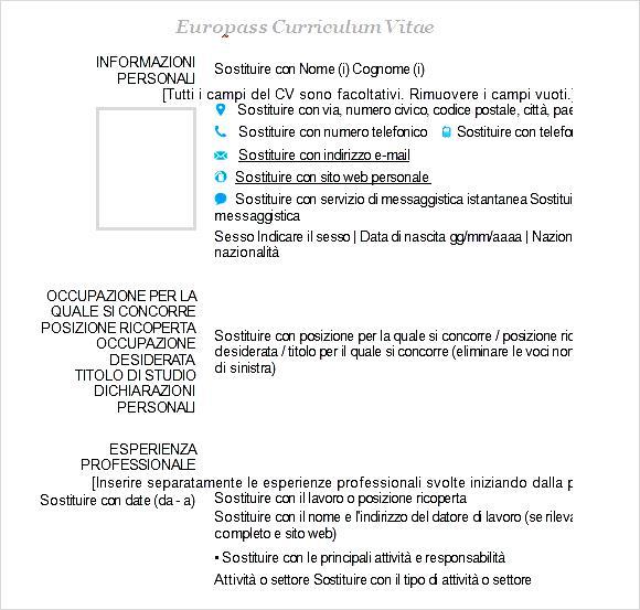 Europass Curriculum Vitae Example Free Samples