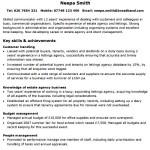 Functional CV Templates