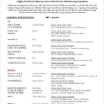 Hairdresser Resume Format