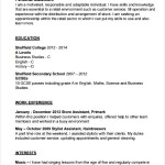 Hairdresser Resume Template PDF