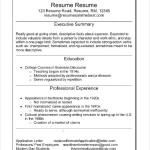Infographic Resume Format PDF
