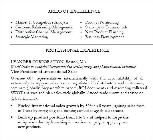 international sales marketing executive pdf