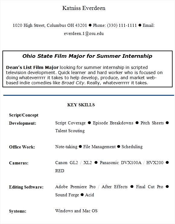 internship sle cv free sles exles format