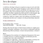 Java Developer Cv Template PDF