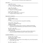 PDF Printable Professional CV Template
