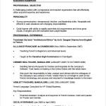 PDF Simple CV Template