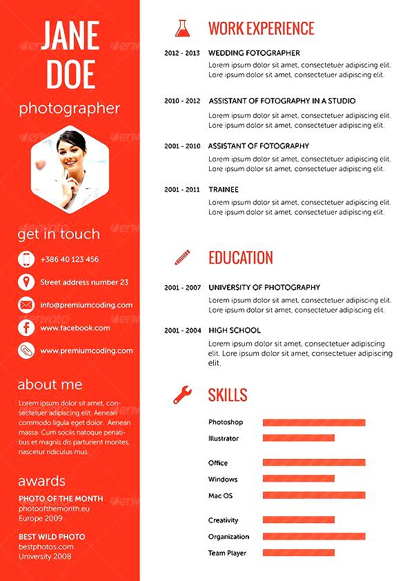 Web design resume examples