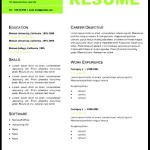 Professional Resume Layout