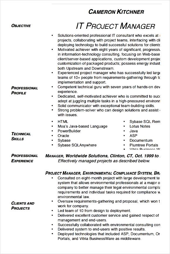 project manager cv template printable