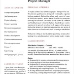 Project Manager CV Template Sample