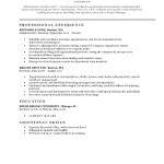 Resume Classic Brick Red Template