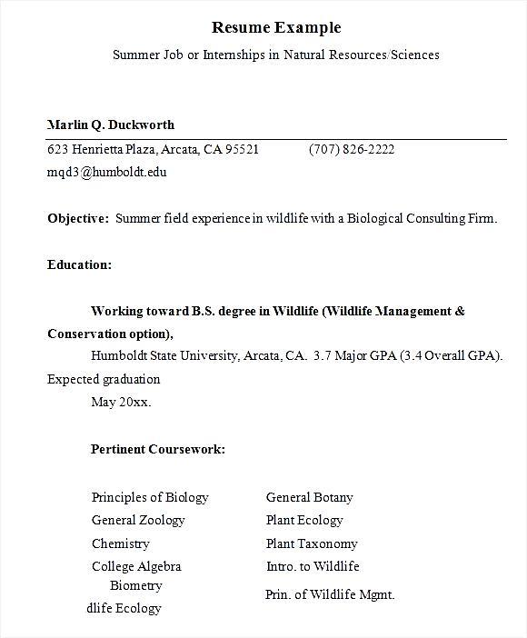resume example for summer internship