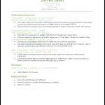 Reverse Chronological Resume Example
