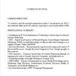 SEO Analyst PDF CV