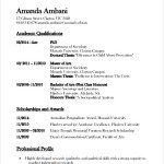 Sample Academic CV Template Free