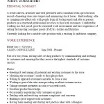 Sample Consultant Resume Template