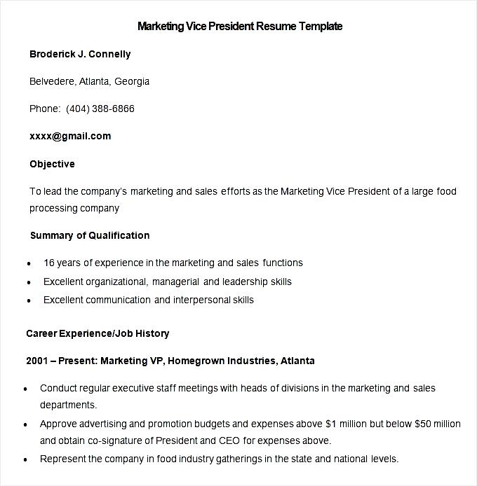 sample marketing vice president resume template