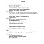 Sample Of Comprehensive Resume