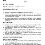 comprehensive resume sample free samples examples format resume curruculum vitae