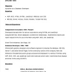 Sample Visual Basic Developer Resume Template