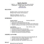 Self Employed Resume Example