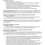 Senior Programmer Resume Template