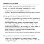 Seo Resume PDF