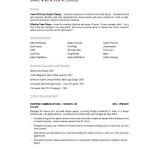 Visual Designer Resume Description