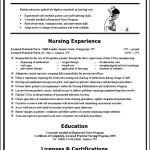 Nursing Curriculum Vitae Sample Example