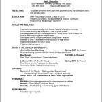 Sample Curriculum Vitae For Employment