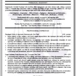 Sample Curriculum Vitae For Lawyers