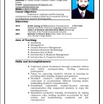 Sample Curriculum Vitae For Teachers