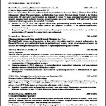 Sample Curriculum Vitae With Accomplishments