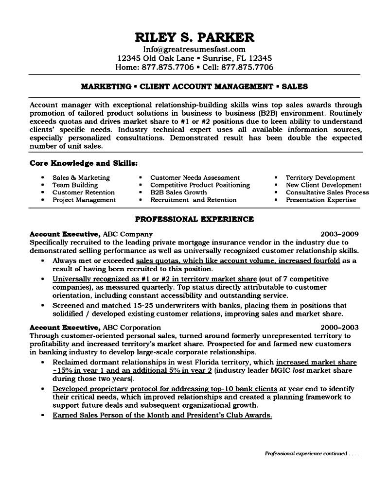 Account Executive On Resume