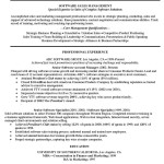 Account Executive Resume Pdf