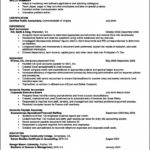 Basic Resume Template Open Office