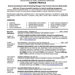 Business Development Executive Resume Examples