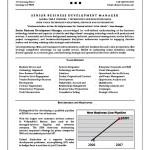 resume objective business development executive resume objective