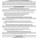 Car Sales Executive Resume