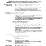 Executive Assistant Resume Template Word