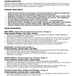 Executive Resume Objective Examples