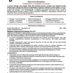 Executive Resume Template Examples