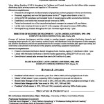 Executive Sales Resume Sample