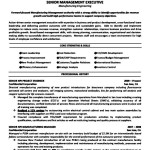 Format For Executive Resume