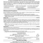 Marketing Executive Resume Samples Free