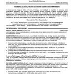 Objective Resume Senior Sales Executive