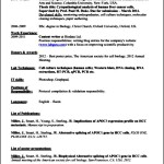 Professional Academic Resume